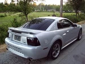 2002 Mustang Gt Rims  Mustang Gt 2003