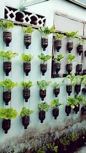 les 25 meilleures idees de la categorie jardin mineral sur With charming idee amenagement jardin devant maison 7 les 25 meilleures idees de la categorie brise vue jardin