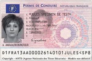 Numero De Permis De Conduire : 2013 visuel nouveau permis conduire carte recto illustrations images mi minist re de l ~ Medecine-chirurgie-esthetiques.com Avis de Voitures