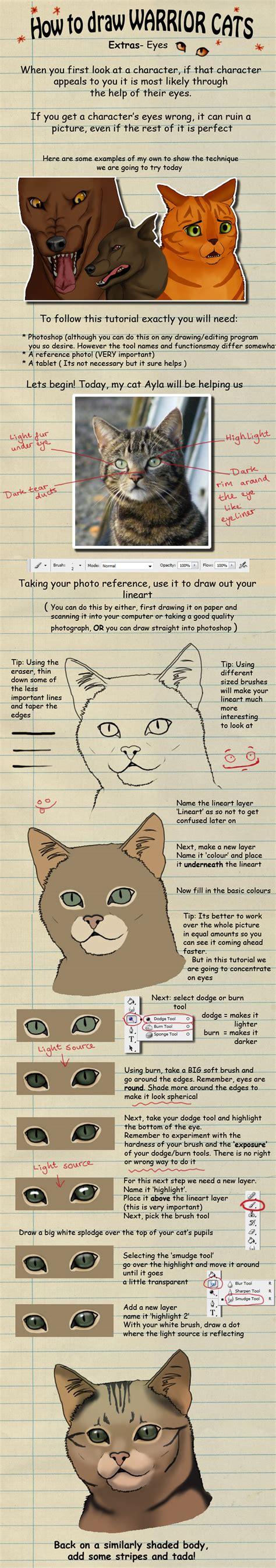 draw warrior cats eyes  heylorlass  deviantart