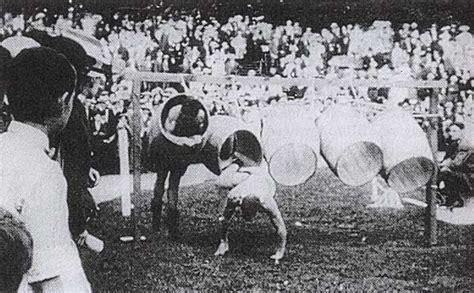 jeux olympiques modernes en 1896 jeux olympiques photos d archives 1900 224 2004 dinosoria