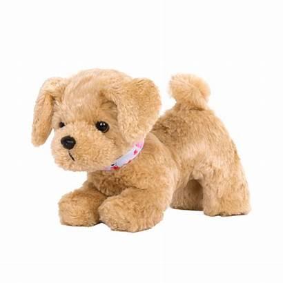 Poodle Golden Puppy Posable Generation Dog Pup