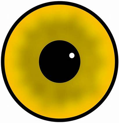 Eyes Cartoon Clipart Yellow Eye Eyeball Clip
