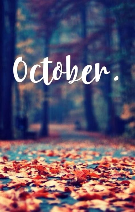 october halloween wallpaper images   bb fashion