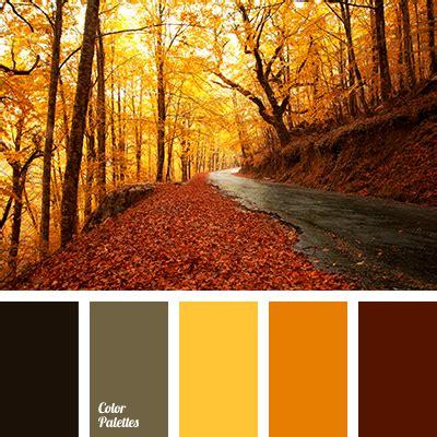 fall color fall colors color palette ideas