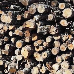 Bois De Chauffage 35 : bois de chauffage ch ne longueur 2m alliance bois de ~ Dallasstarsshop.com Idées de Décoration