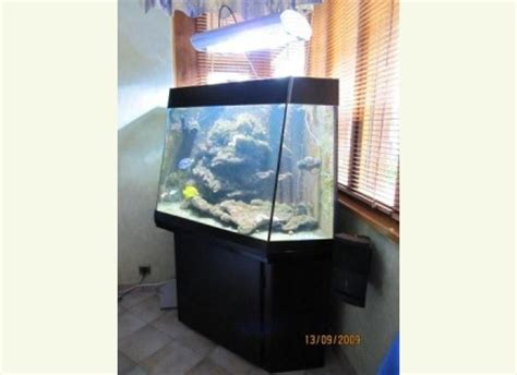 installation aquarium eau de mer a vendre