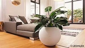 Grande Plante Artificielle : id e d co une plante artificielle dans votre maison ~ Teatrodelosmanantiales.com Idées de Décoration