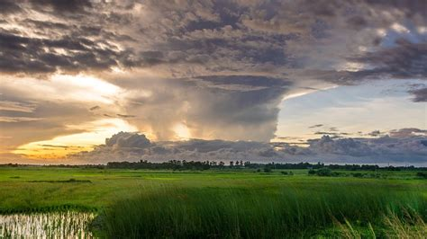 photo nature sky green water clouds  image