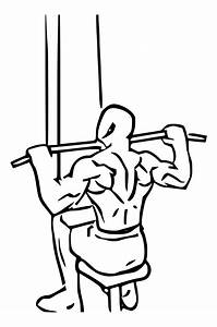 Overview Of Close Grip Lat Pulldown Vs  Wide Grip Exercises