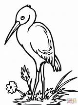 Stork Clipart Coloring Storks Cliparts Colouring Clip Delivering Library Printable Clipground Super Popular Coloringhome sketch template