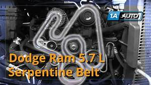 5 7 Hemi Belt Diagram  U2014 Untpikapps