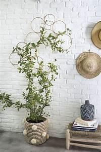 Treillis Pour Plantes Grimpantes : diy une structure graphique pour vos plantes ~ Premium-room.com Idées de Décoration