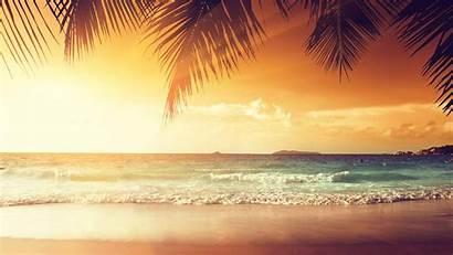 4k Sunset Tropical Palm Beach Trees Uhd