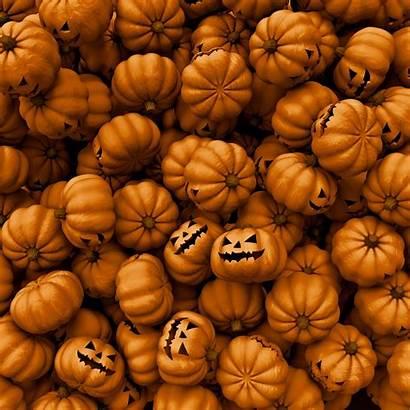 Halloween Ipad Pumpkin Backgrounds Wallpapers Pumpkins Themed