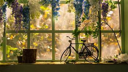 Window Bicycle Statuette 4k Flowers Background Uhd