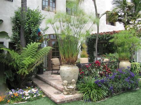 tropical landscaping ideas tropical landscaping calimesa ca photo gallery landscaping network