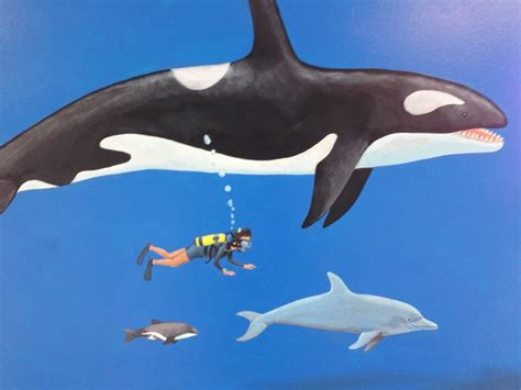 Orca, Bottlenose, Hector's Dolphin...and You!