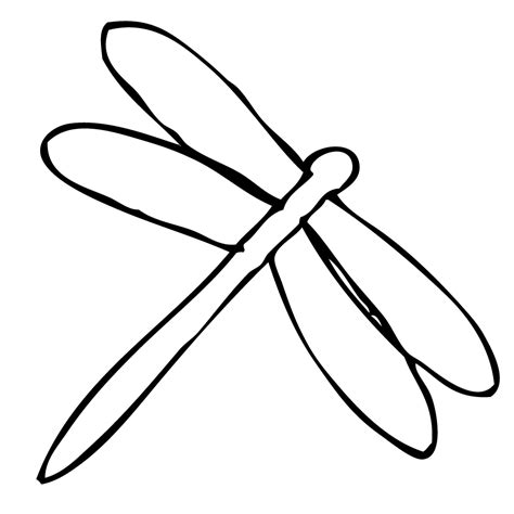 basic outlines of dragonflies dragonfly outline cliparts co