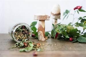 Lavendel Tee Selber Machen : erk ltungstee selber machen zusammenarbeit mit pascoe naturmedizin gartenblog hauptstadtgarten ~ Frokenaadalensverden.com Haus und Dekorationen