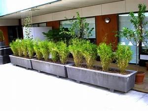 Bac Rectangulaire Pour Bambou : jardini re b ton rectangulaire design contemporain pour le ~ Nature-et-papiers.com Idées de Décoration