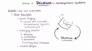 Overview Of The Autonomic Nervous System