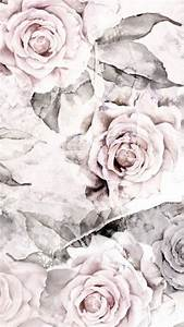 Wallpapers♡ on Pinterest