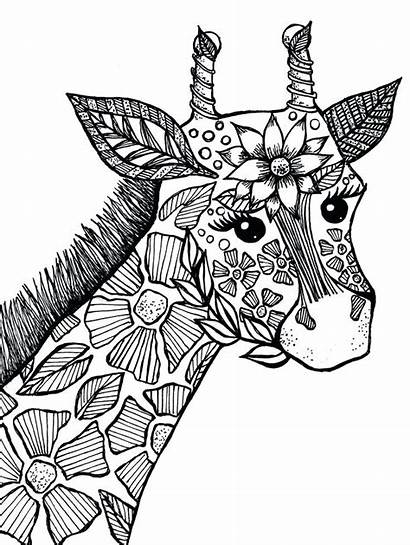 Coloring Animal Pages Giraffe Zen