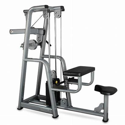 Curl Plate Biceps Loaded Equipment Gym Commercial