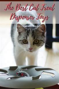 best cat treats the best cat treat dispenser toys cats and meows