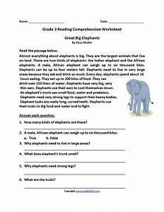 Great Big Elephants Third Grade Reading Worksheets  With