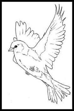 swirly designs | Fun Swirly Bird | Me Casa Creations | Tattoos | Pinterest | Bird, Tattoo and Hennas