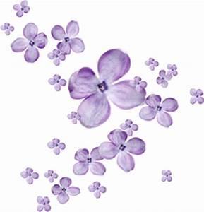 Pot De Fleur Transparent : tubes envolees de fleurs ~ Teatrodelosmanantiales.com Idées de Décoration