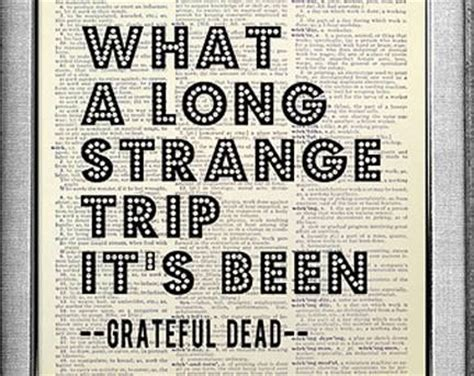 Best Grateful Dead Lyric Quotes Quotesgram. Marilyn Monroe Quotes Dreams. School's Out For Summer Quotes. Summer Health Quotes. Quotes About Love You Can't Be With. Travel Nature Quotes Pinterest. Christmas Quotes Dale Evans. Friday Quotes With Dogs. Movie Quotes Good Luck