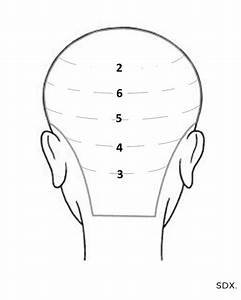 How To   Tape In Hair Extensions Head Map Guide For