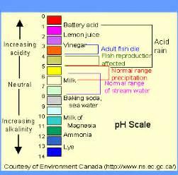 pH Scale Chart