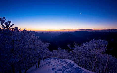 Cool Winter Background by Wallpaper Sunset Mountain Arizona Snow Tree Usa
