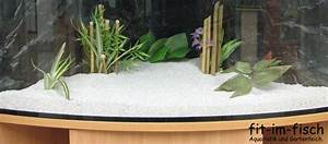 Aquarium Bodengrund Berechnen : fif ground wei aquarium bodengrund kies fit im fisch france ~ Themetempest.com Abrechnung