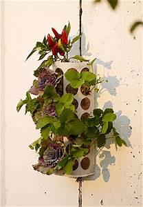 vertikal pflanzen i wohnfreude With feuerstelle garten mit vertikal gärtnern balkon