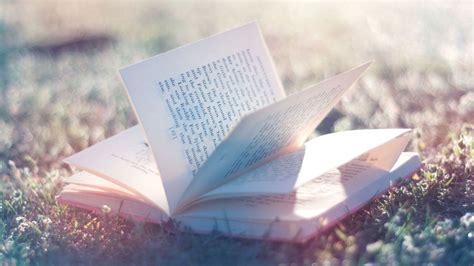 hd hintergrundbilder offenes buch seiten lesen gras