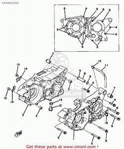 Yamaha Dt250 1978 Usa Crankcase