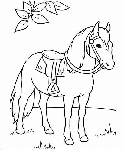 Coloring Horse Trojan Getcolorings Horses Pages Printable