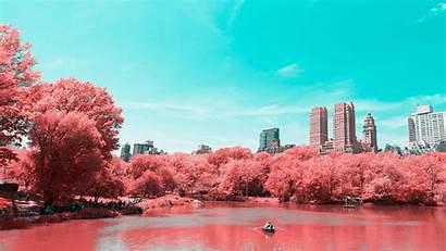 York Park Central Spring Manhattan Lake Wallpapers