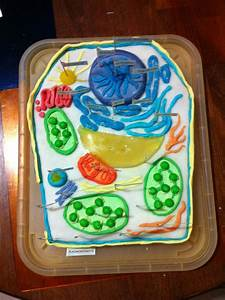 Plant Cell Cake by tofu-survivor on DeviantArt