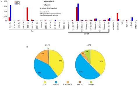 Genome Characterization Of The Oleaginous Fungus