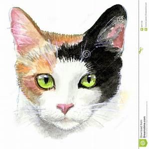Calico Cat Illustration stock illustration. Image of ...