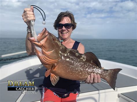 angler lady grouper fishing backcountry catches brandon capt