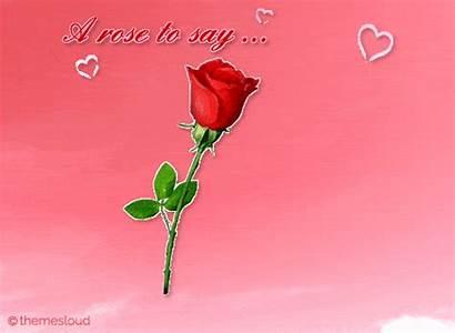 Rose Say Iloveyou Card