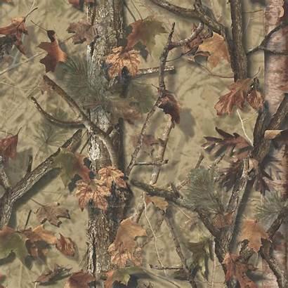Camo Camouflage Realtree Tree Backgrounds Pixelstalk