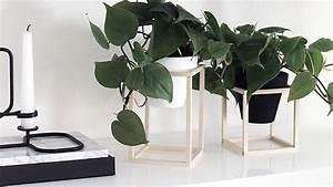 Support Plante Intérieur : un support en bois diy pour vos plantes shake my blog ~ Teatrodelosmanantiales.com Idées de Décoration